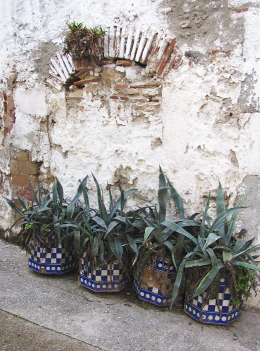 fotografia claudia vidal, diseñadora, creatividad, portugal, lisboa