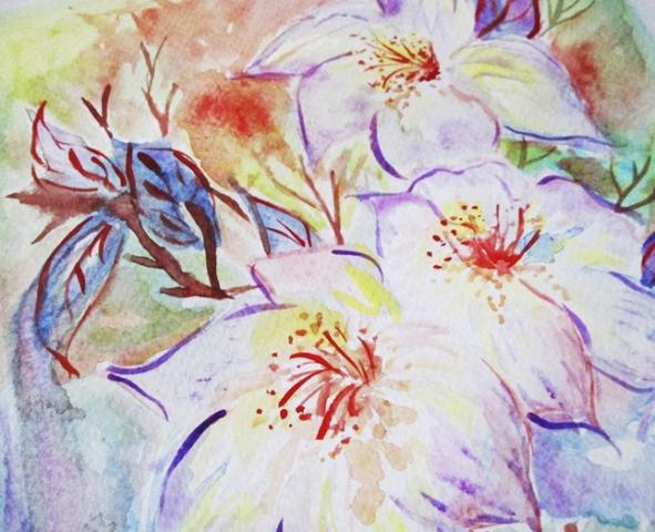 ilustracion flores acuarela, claudia vidal diseñadora